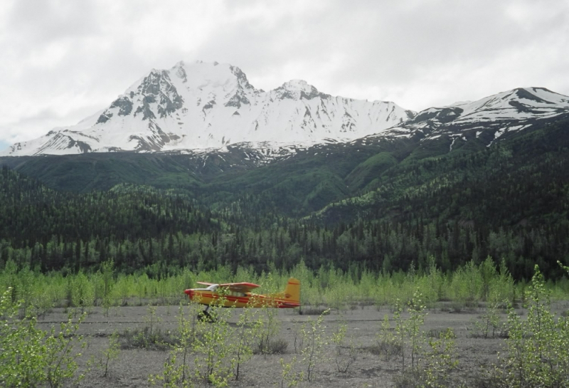 Bush Plane landing at Nizina Glacier