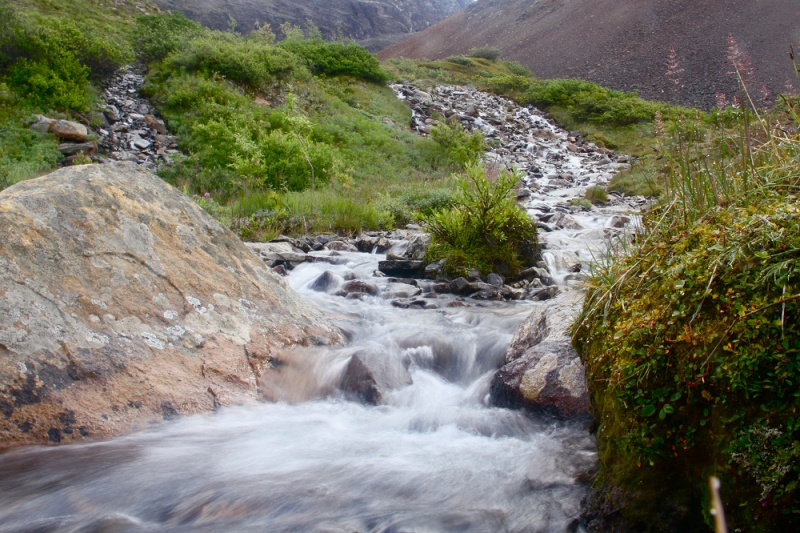 Aalaska creek in Chugach mountains